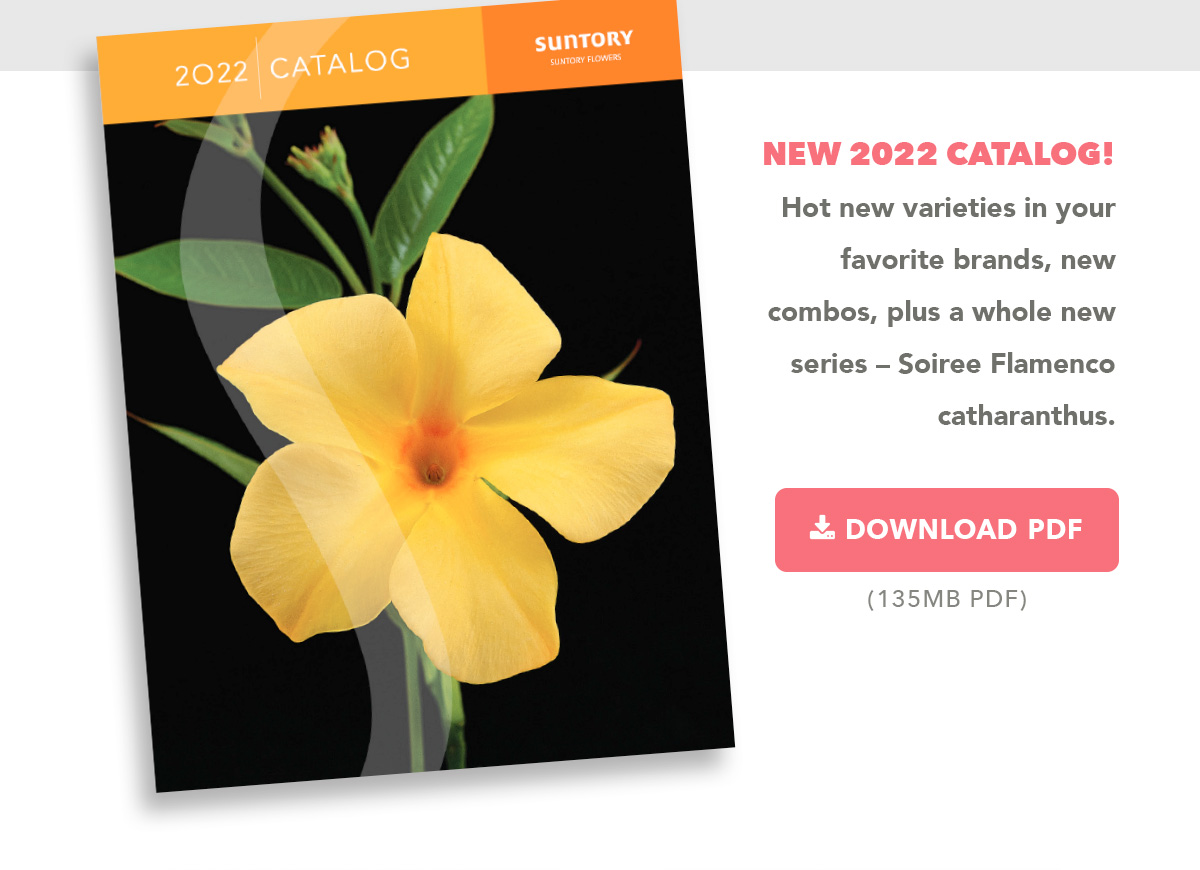 Download Catalog (135MB PDF)
