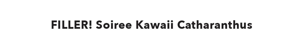 FILLER! Soiree Kawaii Catharanthus