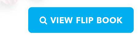 View Flipbook