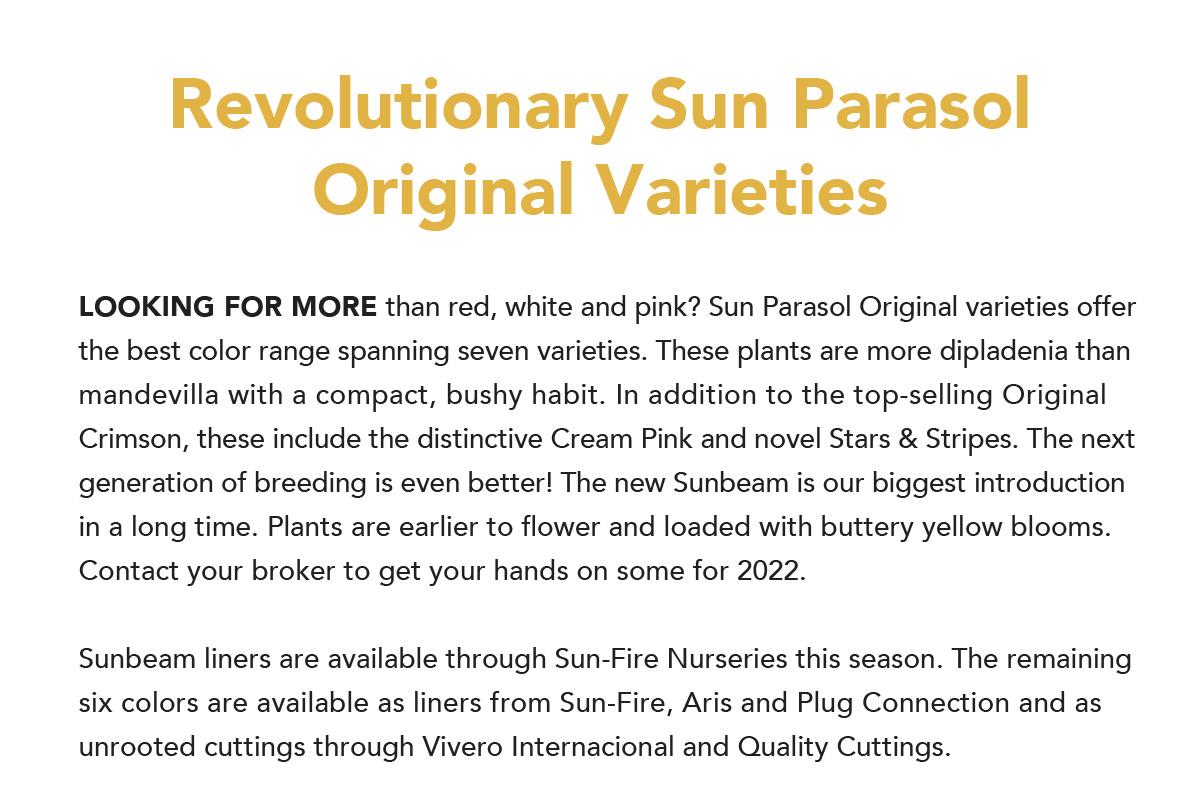 Sun Parasol Original Varieties